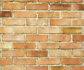 What do I need to know when choosing bricks?